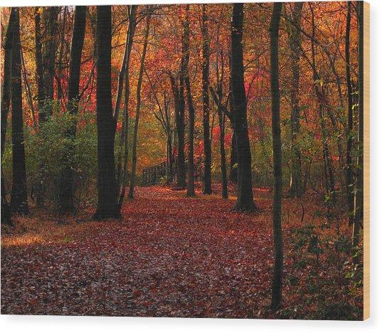 Autumn IIi Wood Print