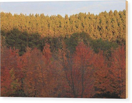 Autumn In Arcadia Wood Print