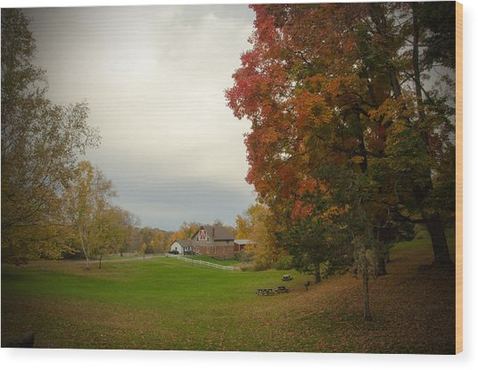 Autumn In Connecticut. Wood Print by Nestor m Montanez