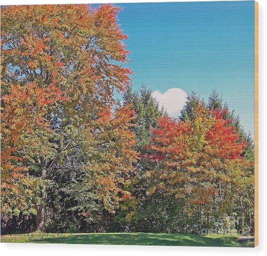 Ohio Autumn In Full Color Wood Print