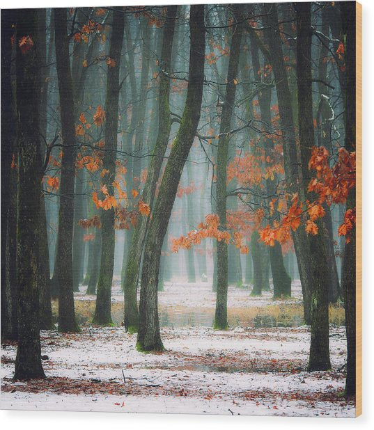 Autumn In My Soul Wood Print