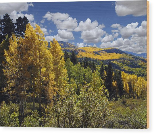 Autumn In New Mexico Wood Print