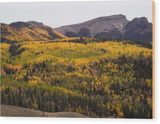 Autumn In The Colorado Mountains Wood Print by Greg Ochocki