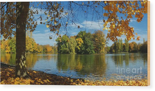 Autumn In The Park 2 Wood Print
