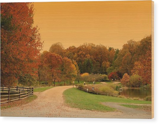 Autumn In The Park - Holmdel Park Wood Print