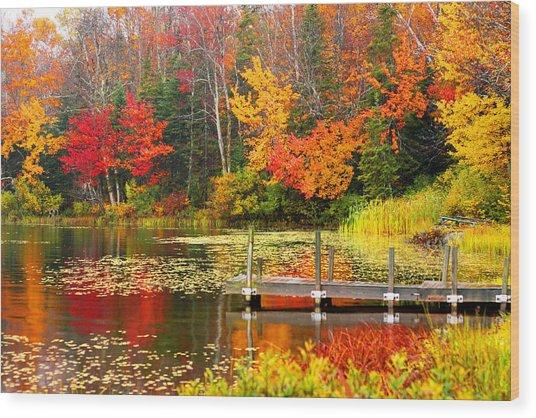 Autumn In Vt Wood Print