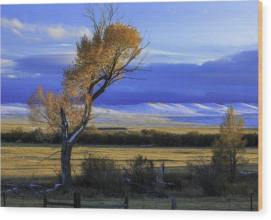 Autumn In Wyoming Wood Print
