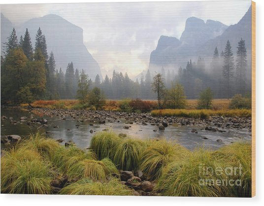Autumn In Yosemite Valley Wood Print