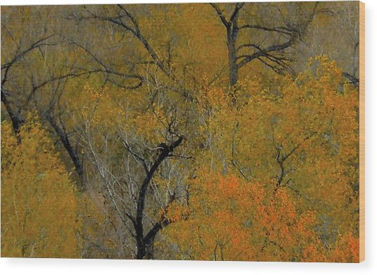 Autumn Intrigue Wood Print