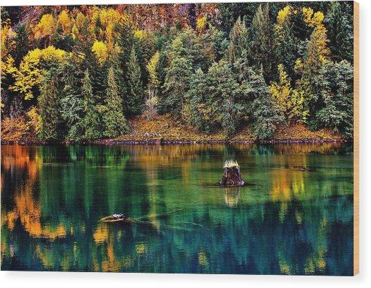 Autumn Jade Wood Print