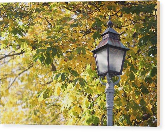 Autumn Lamp Post Wood Print
