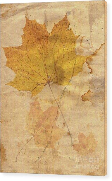 Autumn Leaf In Grunge Style Wood Print