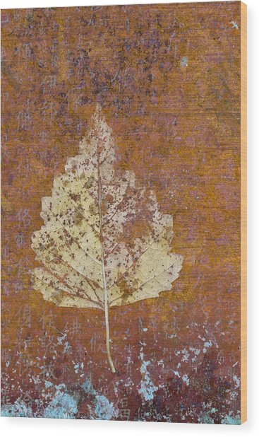 Autumn Leaf On Copper Wood Print