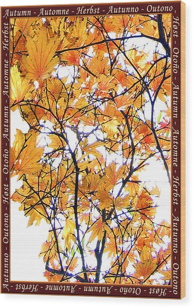Autumn Leaves 4 Wood Print