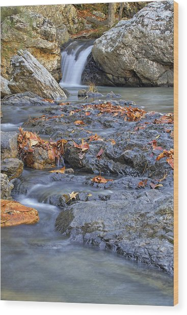 Autumn Leaves At Little Missouri Falls - Arkansas - Waterfall Wood Print