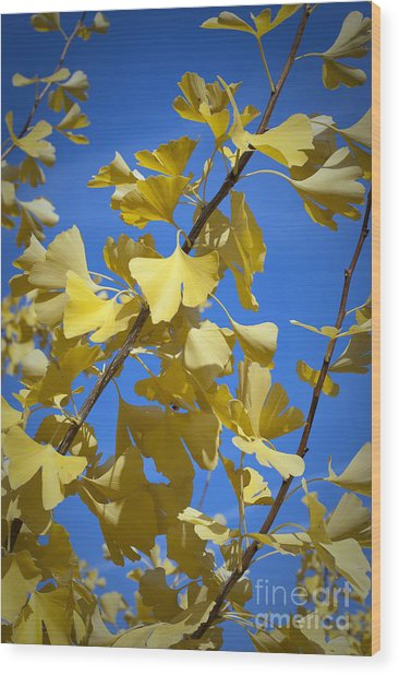 Autumn Leaves Wood Print by Design Windmill
