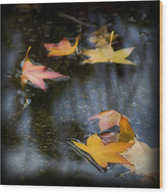 Autumn Leaves On Water Wood Print