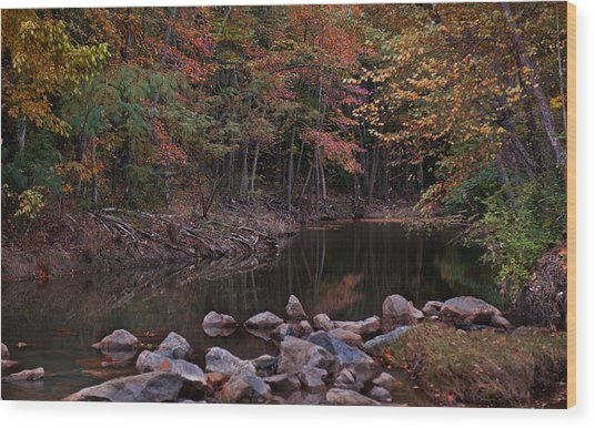 Autumn Leaves Reflecting In The Stream Wood Print