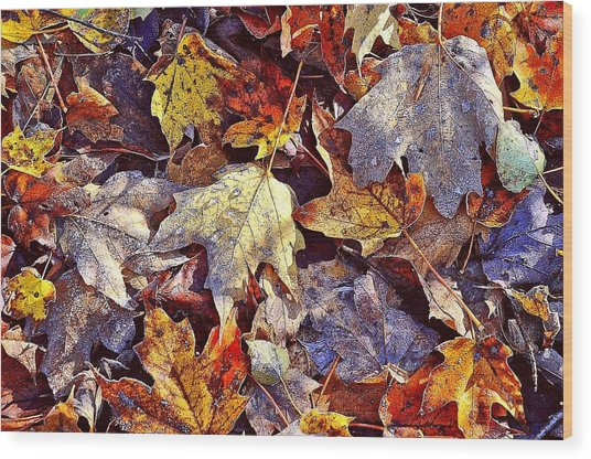 Autumn Leaves With Frost Wood Print