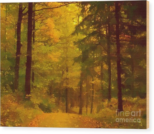 Autumn Lights Wood Print by Lutz Baar