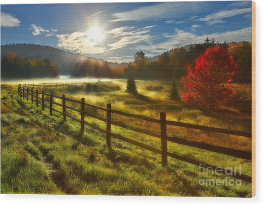 Autumn Meadow Sunrise I - West Virginia Wood Print