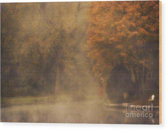Autumn Mist Wood Print by Julie Palyswiat