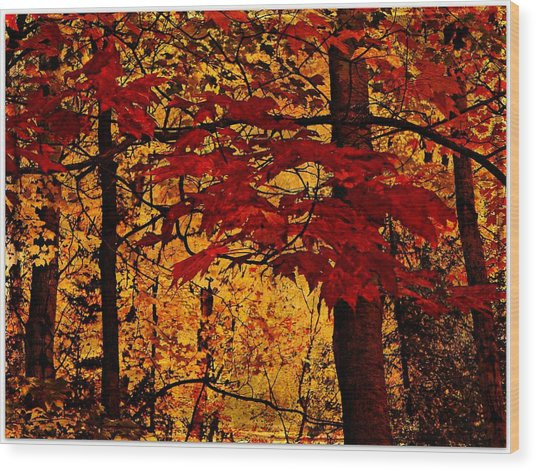 Autumn Mosiac  Wood Print by Dianne  Lacourciere