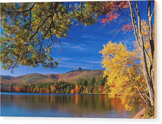 Autumn Mt Chocorua Nh Wood Print
