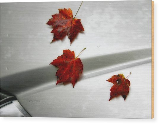 Autumn On The Car Wood Print