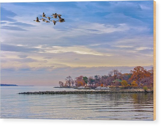 Autumn On The Chesapeake Bay Wood Print