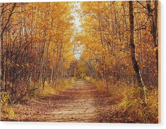 Autumn On The Harte Trail Wood Print