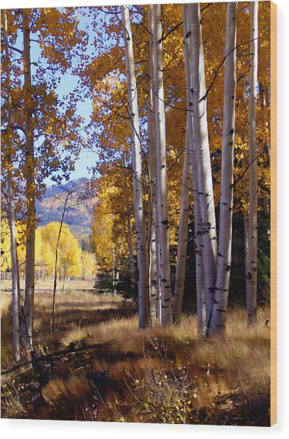 Autumn Paint Chama New Mexico Wood Print