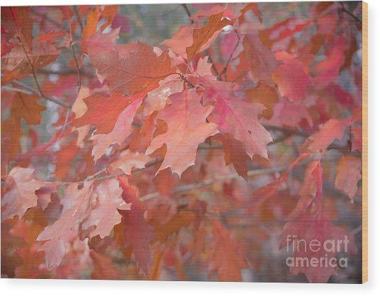 Autumn Paintbrush Wood Print