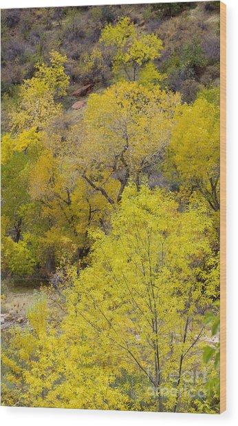 Autumn Palatte Wood Print by John Blumenkamp