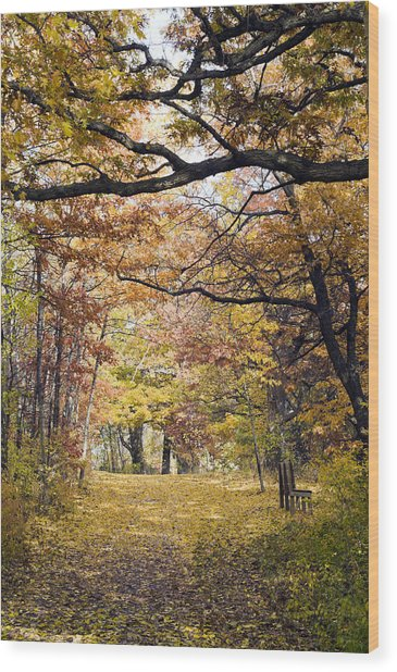 Autumn Pedestrian Path Wood Print