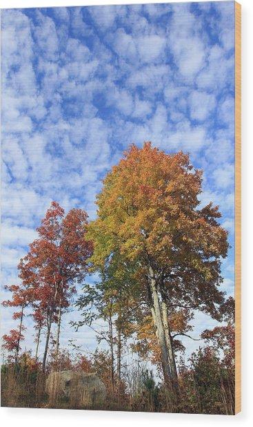 Autumn Perfection Wood Print