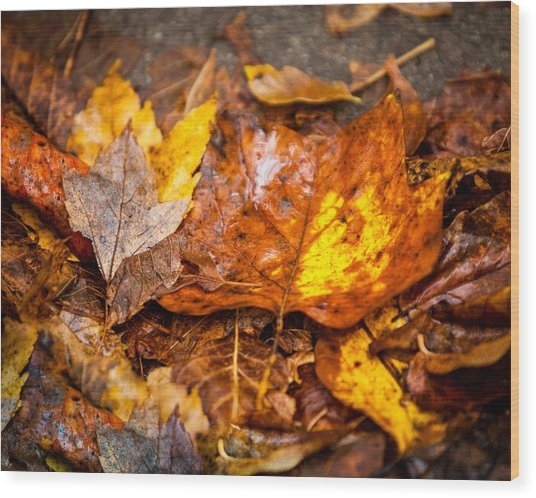 Autumn Pile Wood Print