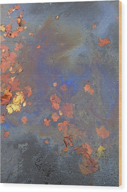 Autumn Puddle Wood Print