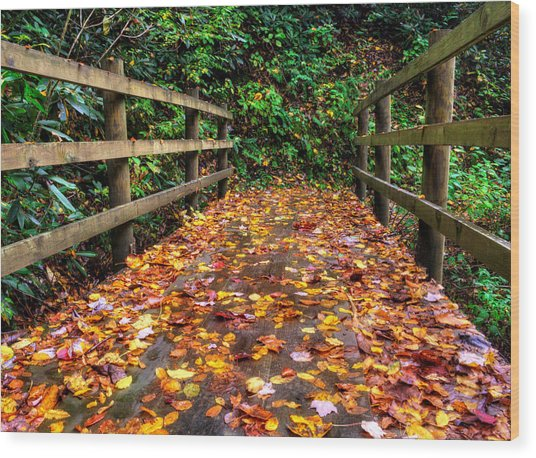 Autumn Rain At Joyce Kilmer Memorial Forest Wood Print