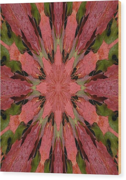 Autumn Rain Kaleidoscope Wood Print
