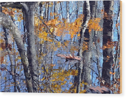 Autumn Reflection With Leaf Wood Print