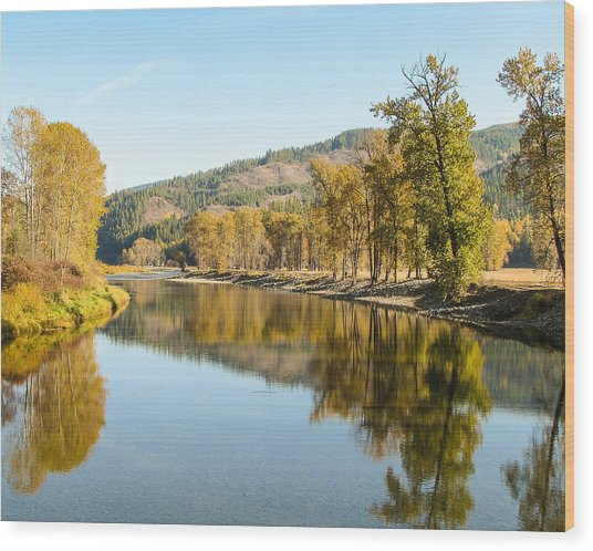 Autumn Reflections 2 Wood Print by Curtis Stein