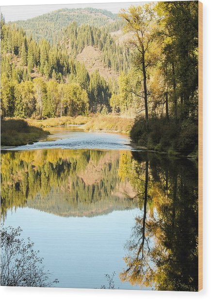 Autumn Reflections 5 Wood Print by Curtis Stein