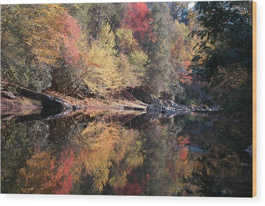 Autumn Reflections Wood Print by John Saunders