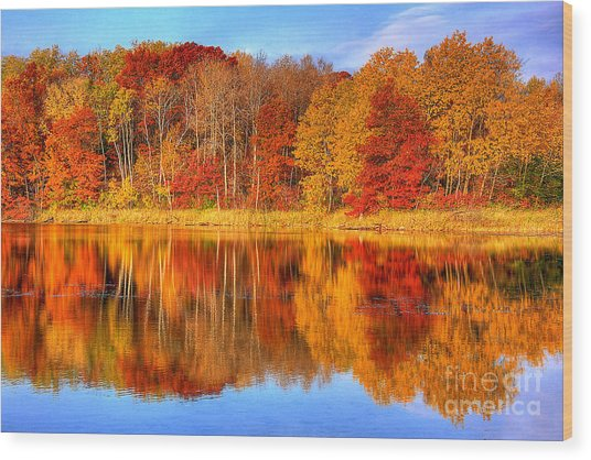 Autumn Reflections Minnesota Autumn Wood Print