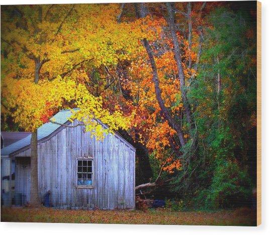 Autumn Rest Wood Print by Trish Clark