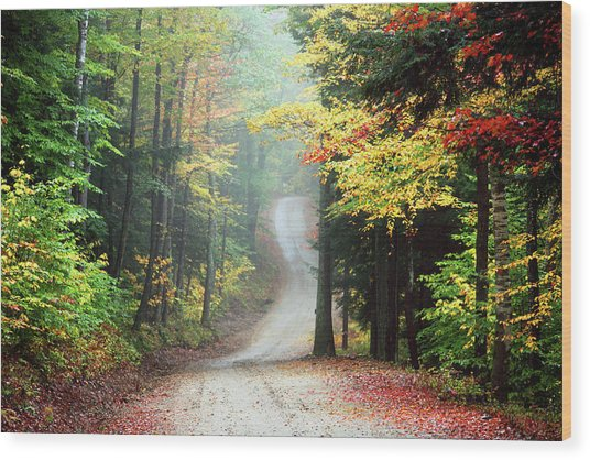 Autumn Road In Rural New Hampshire Wood Print