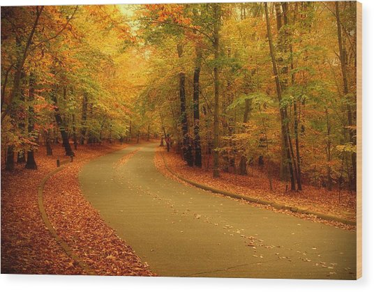 Autumn Serenity - Holmdel Park  Wood Print
