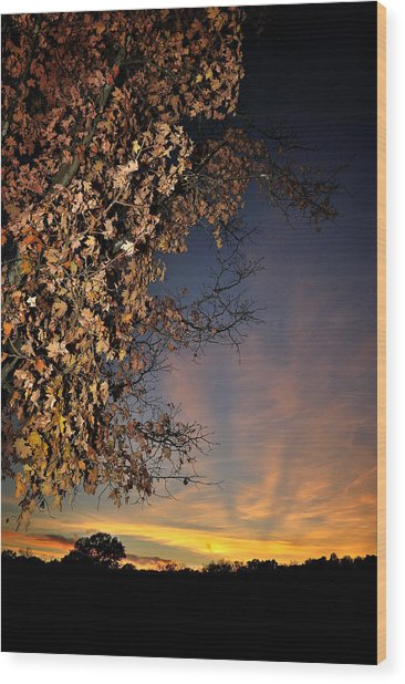 Autumn Sky And Leaves 2 Wood Print