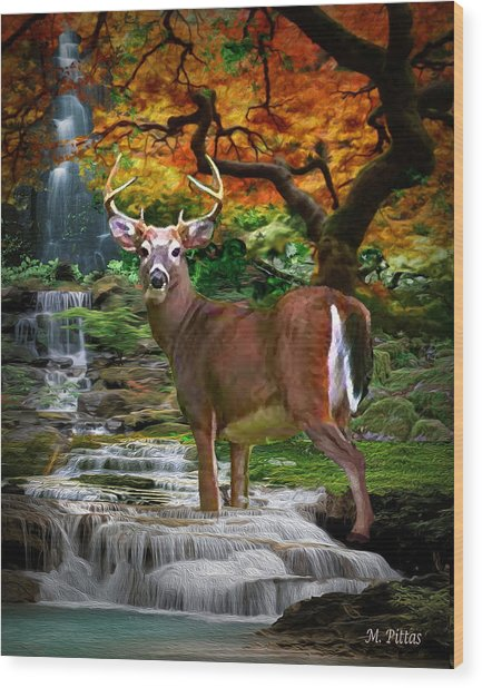 Autumn Stag Wood Print